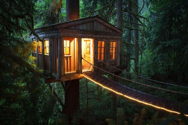 民宿木屋 树上木屋